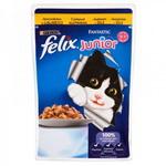Консервированный корм для кошек JUNIOR Кусочки в желе с курицей